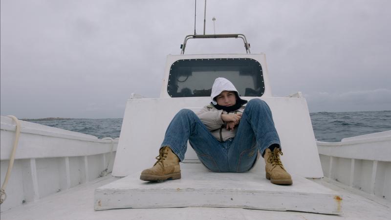 still1_havet